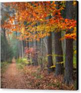 Down The Trail Square Canvas Print by Bill Wakeley