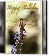 Dragonfly Birthday Card Canvas Print by Carolyn Marshall