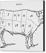 Drawing Of A Bullock Marked To Show Eighteen Different Cuts Of Meat Canvas Print by English School