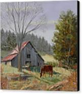 Dream Acres Canvas Print