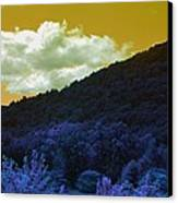 Dream Scape Canvas Print by Michael Sokalski