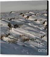 Drifting Around Canvas Print by Edward R Wisell