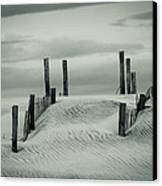 Drifting Dunes Canvas Print by Tom McGowan