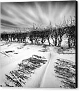 Drifting Snow Canvas Print by John Farnan