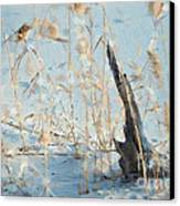 Driftwood Abstract Canvas Print by Betty LaRue