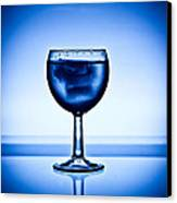 Drink? Canvas Print by Michael Murphy