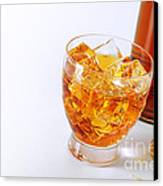 Drink On The Rocks Canvas Print