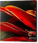 Drop Dead Red Canvas Print by Wobblymol Davis