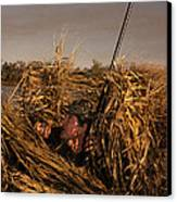 Duck Hunter In Blind Canvas Print by Ron Sanford