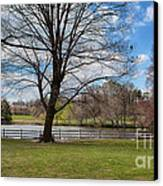 Duck Pond Haverford College Canvas Print by Kay Pickens