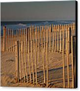 Dune Fences At First Light I Canvas Print