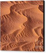 Dune Patterns - 245 Canvas Print