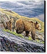 Dunraven Pass Grizzly Family Canvas Print by Paul Krapf