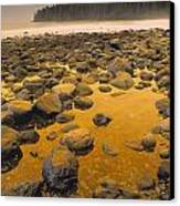 D.wiggett Rocks On Beach, China Beach Canvas Print by First Light