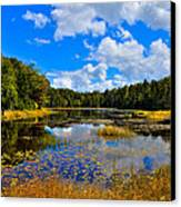 Early Autumn At Fly Pond - Old Forge New York Canvas Print by David Patterson