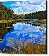 Early Autumn At Fly Pond - Old Forge Ny Canvas Print by David Patterson