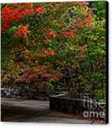 Early Fall At Talimena Park Canvas Print by Robert Frederick