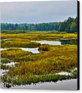 Early Fall On The Moose River - Old Forge New York Canvas Print by David Patterson