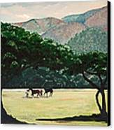 Early Morning Savannah Canvas Print