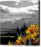 Earth Laughs In Flowers Canvas Print by Dan Sproul