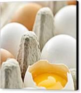 Eggs In Box Canvas Print by Elena Elisseeva