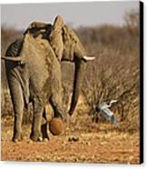 Elephant On The Run Canvas Print by Paul W Sharpe Aka Wizard of Wonders