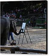 Elephant Show - Maesa Elephant Camp - Chiang Mai Thailand - 011344 Canvas Print by DC Photographer
