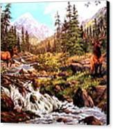 Elk Meadows Canvas Print by W  Scott Fenton
