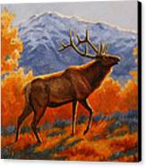 Elk Painting - Autumn Glow Canvas Print by Crista Forest
