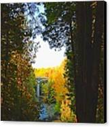 Elora Gorge Canvas Print by Peter Jackson
