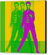 Elvis Three 20130215 Canvas Print