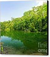 Emerald Pool Canvas Print by Atiketta Sangasaeng