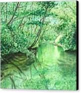 Emerald Stream Canvas Print