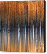 Emerging Beauties Reflected Canvas Print