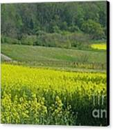 English Countryside Canvas Print by Ann Horn