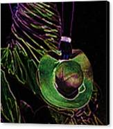 Enigma Emerald. Black Art Canvas Print by Jenny Rainbow