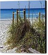 Enter The Beach Canvas Print by Susan Leggett