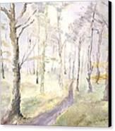 Epping Forrest Canvas Print by David  Hawkins