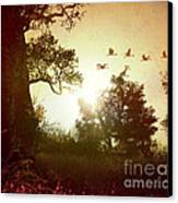 Evening Flying Geese Canvas Print by Bedros Awak