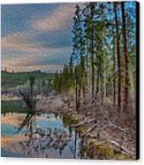 Evening On The Banks Of A Beaver Pond Canvas Print by Omaste Witkowski