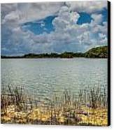 Everglades Lake 6930 Canvas Print by Rudy Umans