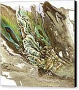 Explore Canvas Print by Karina Llergo