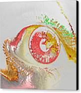 Eye 2 Canvas Print by Soumya Bouchachi