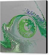 Eye Canvas Print by Soumya Bouchachi