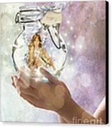 Fairy Canvas Print by Juli Scalzi