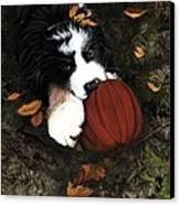 Fall 4 U Canvas Print by Liane Weyers