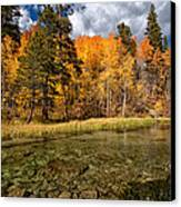 Fall Along Bishop Creek Canvas Print by Cat Connor