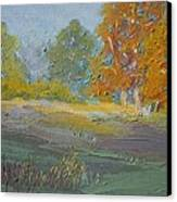 Fall Field Canvas Print by Dwayne Gresham