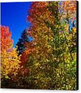 Fall Foliage Palette Canvas Print
