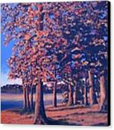 Fall In East Texas Canvas Print